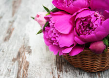 Basket with pink peony Royalty Free Stock Photography