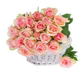 Basket of pink roses Royalty Free Stock Photo
