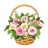 Basket with pink and white roses. Vector illustration. Stock Photos