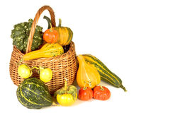 Basket of plenty Royalty Free Stock Photos
