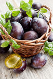 Basket of plums Stock Photos