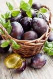 Basket of plums Stock Photos