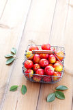 Basket of plums Stock Image