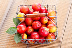 Basket of plums Stock Photography
