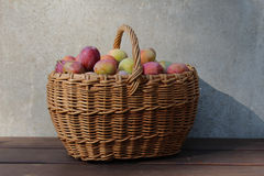 A basket of plums. Stock Images