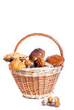 Basket with porcini, orange and brown cap boletuses Stock Photo