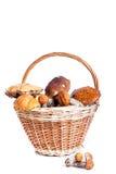 Basket with porcini, orange and brown cap boletuses Stock Photo