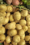 Basket of potatoes. Close-up of a basket of potatoes Royalty Free Stock Images