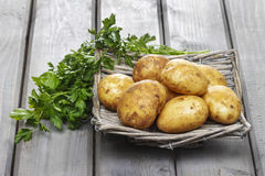 Basket of potatoes on grey wooden table Stock Photos