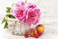 Basket of pretty pink peonies, white rustic background, Stock Photos