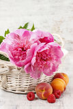 Basket of pretty pink peonies, white rustic background, Royalty Free Stock Photos
