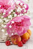Basket of pretty pink peonies, white rustic background, Stock Images