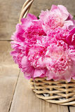 Basket of pretty pink peonies Stock Photos