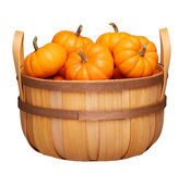 Basket with pumpkins isolated on white Royalty Free Stock Photos