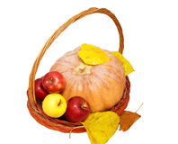 Basket with pupmkin and ribbon Stock Photos