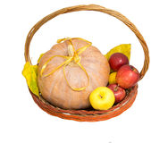 Basket with pupmkin and ribbon Royalty Free Stock Photo