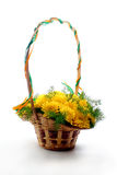 Basket of flowers royalty free stock photography