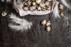 Basket with quail  eggs and feathers on rustic wooden background,  horizontal Stock Images