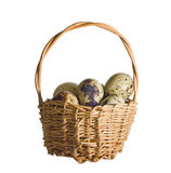 Basket with quail eggs Stock Photo