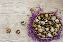A basket with quail eggs stands on a violet decor royalty free stock images