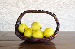 Basket of quinces Stock Image