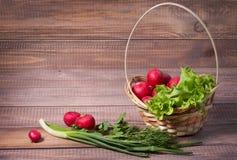 Basket with radishes Royalty Free Stock Photos
