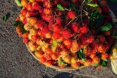 Basket with rambutan, Vietnam Royalty Free Stock Photo
