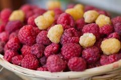 Basket of raspberries Royalty Free Stock Images