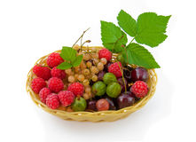 Basket with a raspberry, a cherry and a gooseberry Stock Image