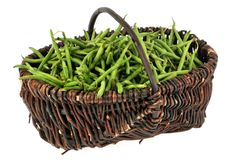 Basket of raw green beans in a wicker basket royalty free stock image