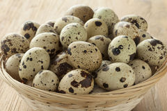 Basket with raw Quail eggs. Basket with fresh raw Quail eggs close up Royalty Free Stock Image