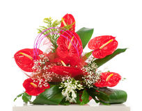 Basket of red anthurium flowers Stock Photos
