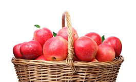 Basket with red, fresh, organic apples  Stock Photos