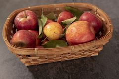 A basket of red apples. On a black background stock image