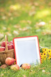 Basket of red apples and tablet PC Stock Photo