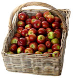 Basket with red apples Stock Photos