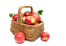 Basket with red apples on a white background Stock Images