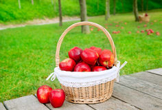 Basket of red apples on wood floor Stock Images