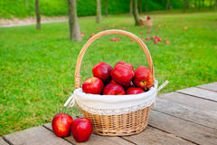Basket of red apples on wood floor Royalty Free Stock Image
