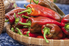 Basket of red bell peppers. Royalty Free Stock Images
