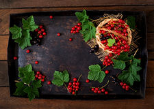 Basket with Red and Black currant with leaves on a black background. Stock Image