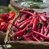 Basket of red chili peppers on the Borough market in London Royalty Free Stock Photography