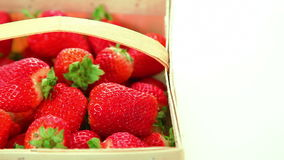 Basket of red delicious strawberries on white background stock video footage