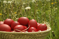 Basket with red Easter eggs. On blurry background Royalty Free Stock Image