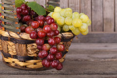 Basket of Red and Green Grapes Stock Images