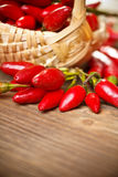 Basket of red hot chili peppers Royalty Free Stock Photography