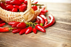 Basket of red hot chili peppers Royalty Free Stock Image