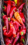 Basket of red hot peppers Stock Photo