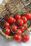 Basket of red organic tomatoes Stock Images