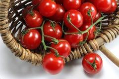 Basket of red organic tomatoes royalty free stock image
